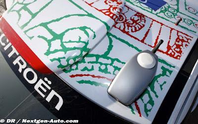 techo citroen WRC  mexico