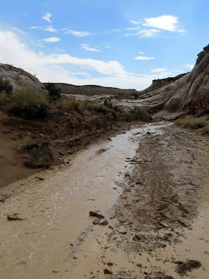 After the rain let up, Ernie Canyon had a small, steady flow