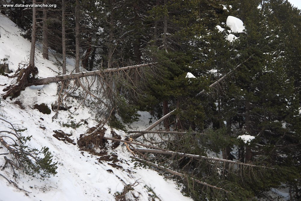 Avalanche Vanoise, secteur Dent Parrachée, Aussois - Combe des Balmes - Photo 1 - © Duclos Alain