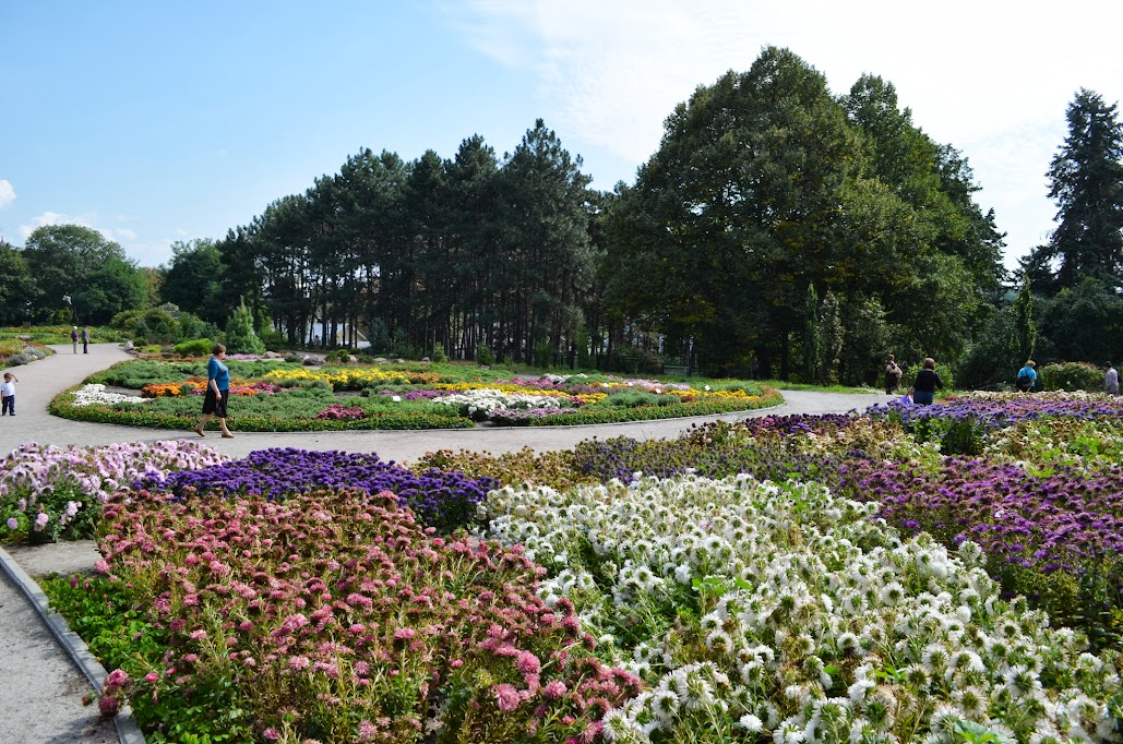 глаз фоминский ботанический сад фото в киеве книжки