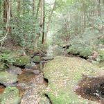 Narara creek (192440)
