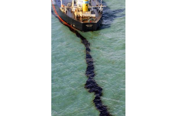 marine pollution 2 essay
