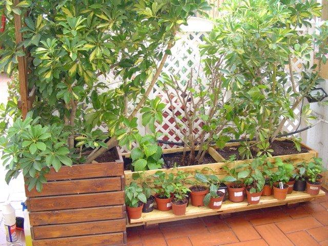 Como hacer una jardinera portal de manualidades for Manualidades con palets paso a paso
