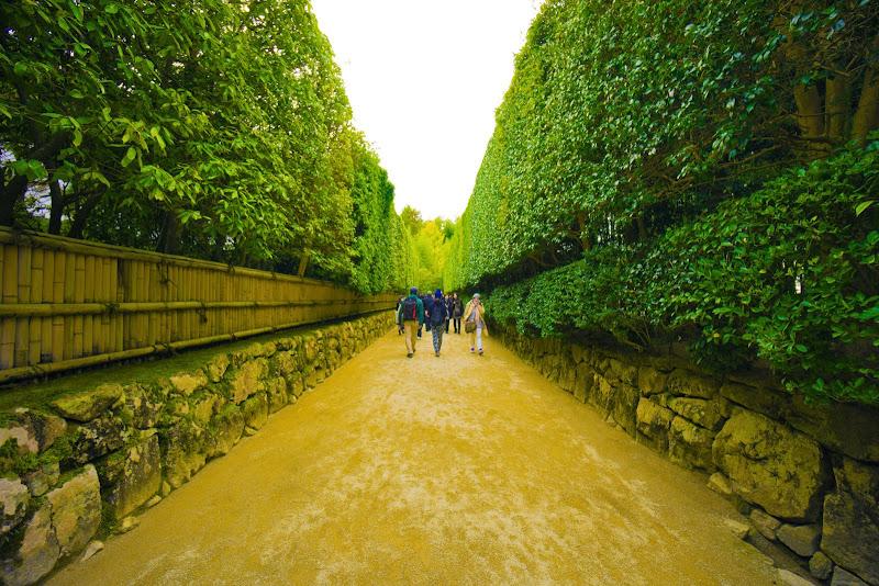 京都 銀閣寺垣 写真2
