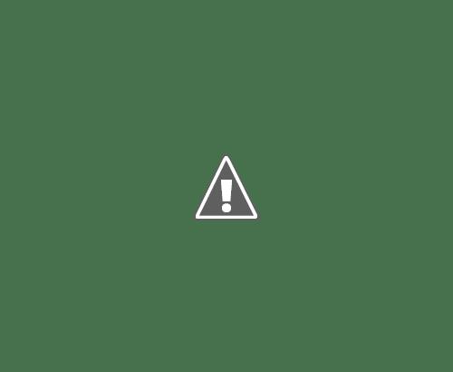 18 05 2013 07+copy - Кошки ))