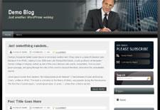 Free Wordpress Theme - Business Niche