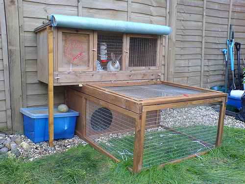 The ideal rabbit hutch our pets we love 39 em for Guinea pig outdoor run plans