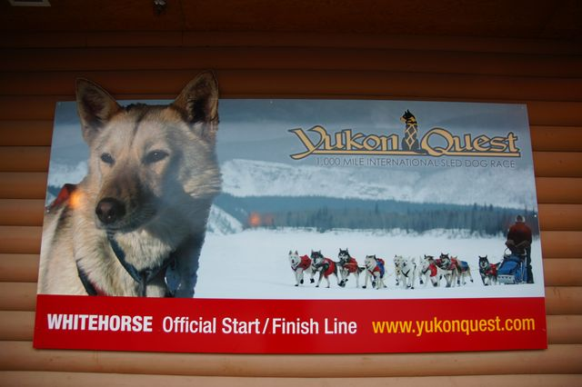 達人帶路-環遊世界-Yukon Quest
