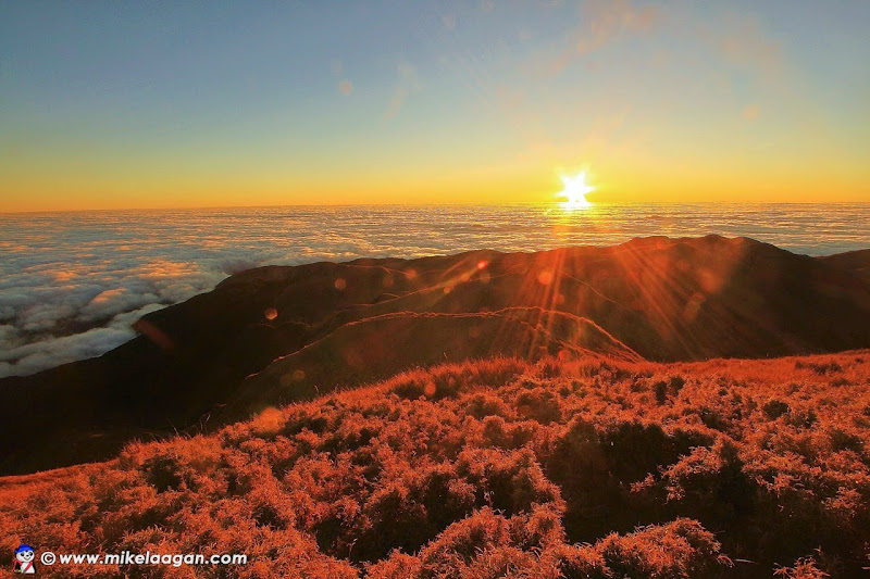 Mt Pulag Sunrise