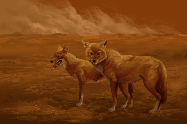 wildlife digital painting