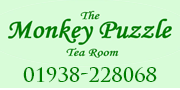 monkey puzzle tea rooms button banner