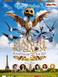Yellowbird - Chú Chim Vàng
