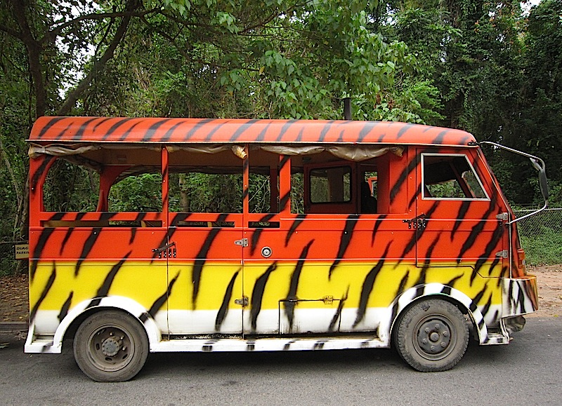 Zoobic Safari's tiger bus