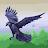 Ananya Banerji avatar image