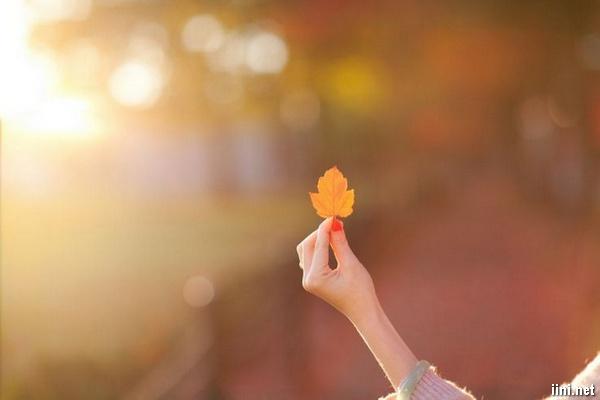ảnh cô gái nhặt chiếc lá mùa thu