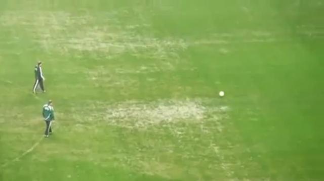 Estado do relvado de Alvalade no Sporting - Videoton (Liga Europa)