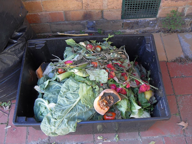 recycle waste for compost