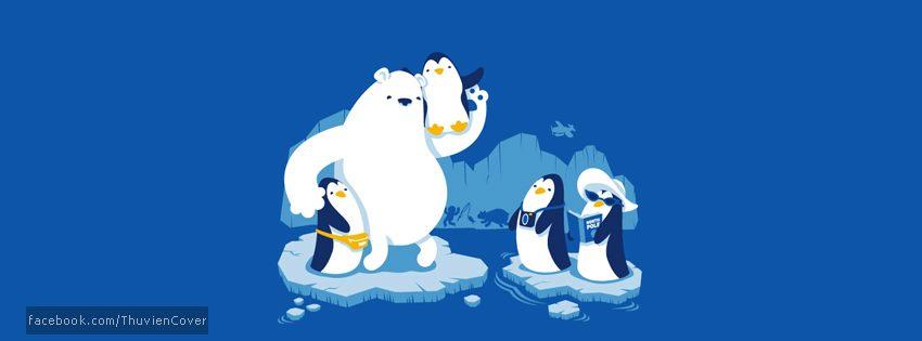 Ảnh bìa chim cánh cụt