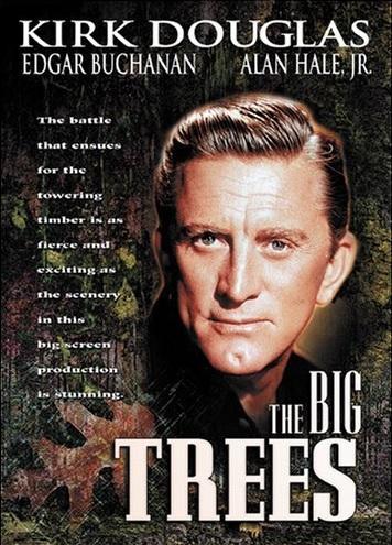 big-trees2.jpg