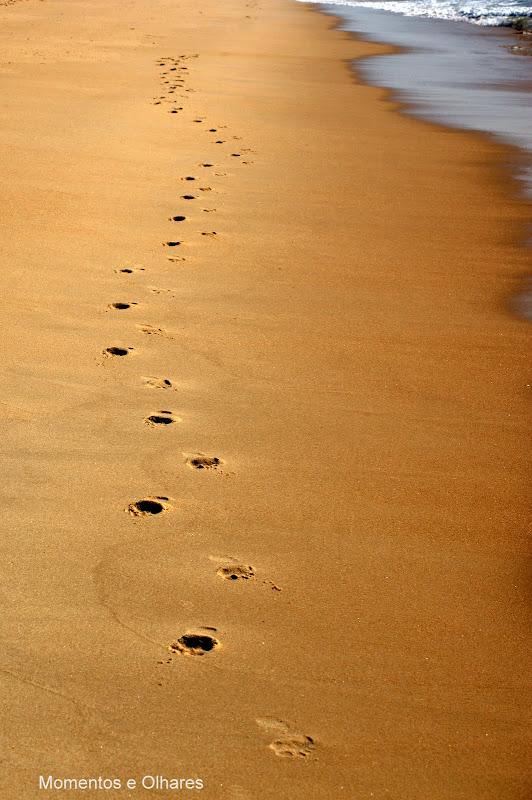 E os passos que deres ....