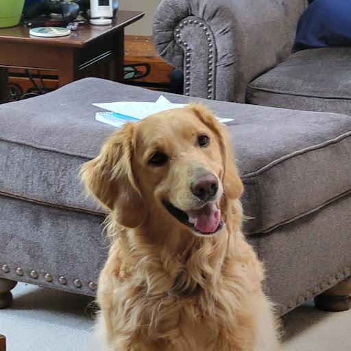 David Zimpfer - Address, Phone Number, Public Records   Radaris