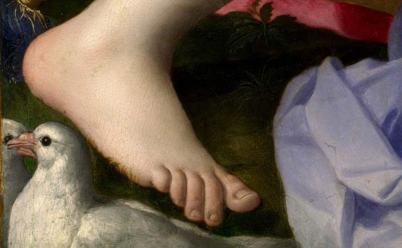 A foot in Agnolo Bronzino's