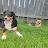 Nina G avatar image