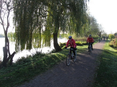 Cycling past a lake and willows
