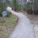 Int of Bullocks Walking and car park tracks (296888)