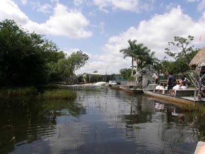 [Floride 2011 - Trip Report] WDW,DCL,USO,IOA,KSC,DC,BG,SW,ETC ... - Page 5 P5030053