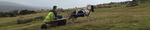 Rural Rides Again