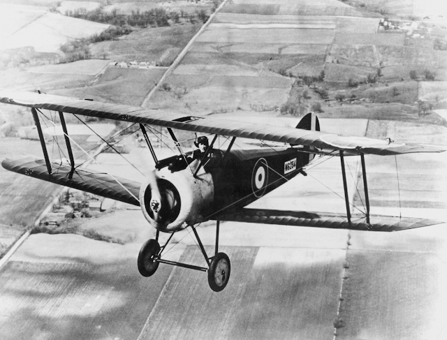 Sopwith Camel in Flight