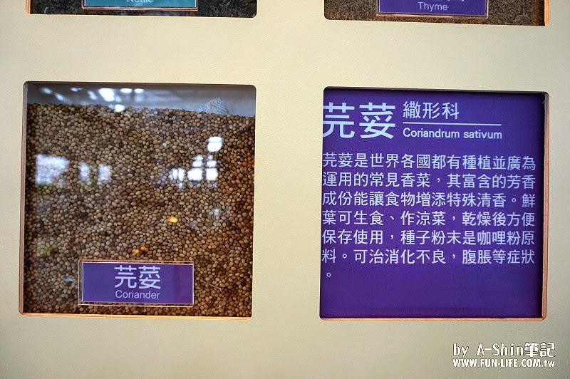 香草菲菲 宜蘭員山悠哉玩,阿新要來介紹香草菲菲芳香植物博物館,靜態活動加悠閒生活,跟上腳步~