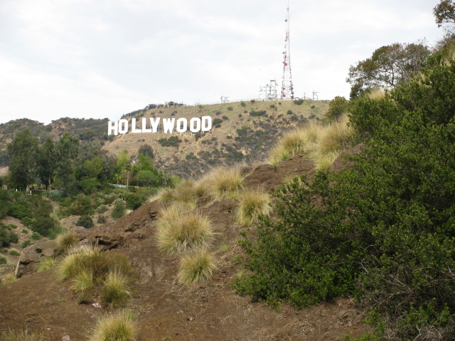 Hollywood sign in the Hollywood hills