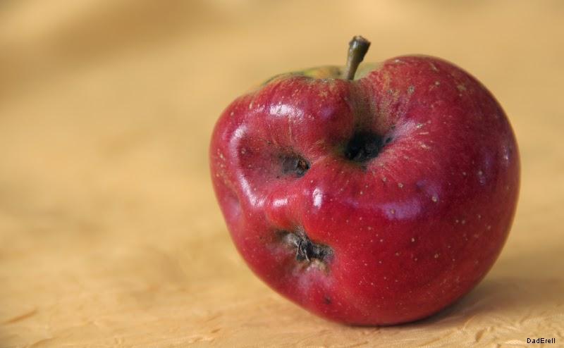 Pomme déformée