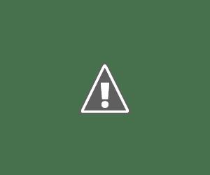 Обзор навигаторов. Отзыв о  GPS навигаторе Garmin Foretrex 301