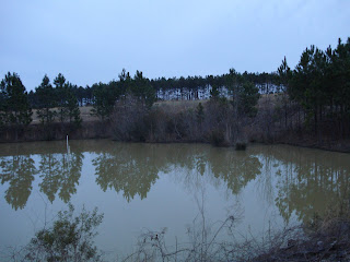 Sediment ponds are required for landfills. Where ponds have aboveground embankments, the embankments must be kept clear of trees to prevent root tunnels.