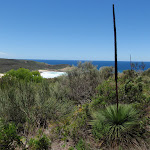 View from Grass Tree Track (249592)