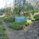 Int of Thredbo River and Golf Course Walk tracks (274274)