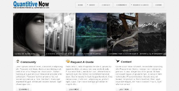 Quantitive Wordpress Theme