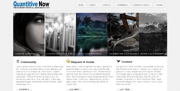 Quantitive Wordpress Theme