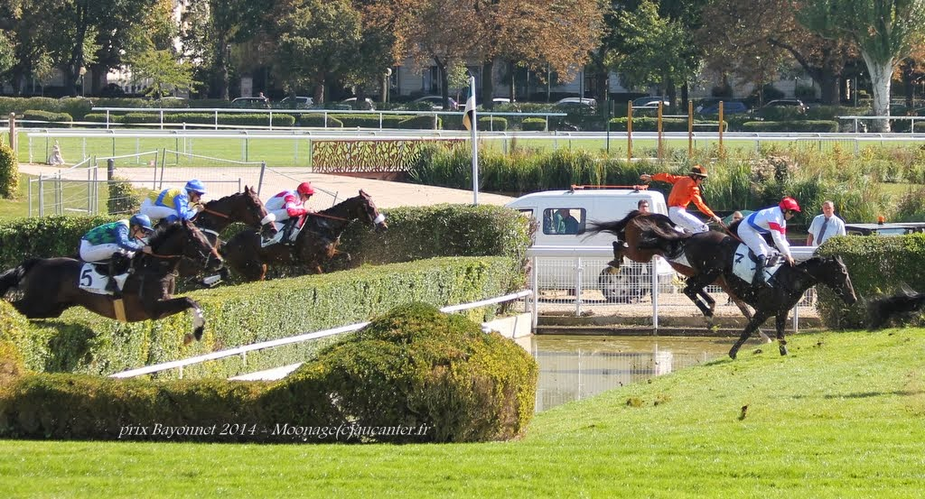 Photos Auteuil le 27-09-2014 IMG_4259