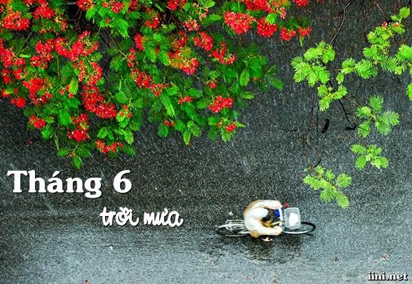 thơ tháng sáu trời mưa