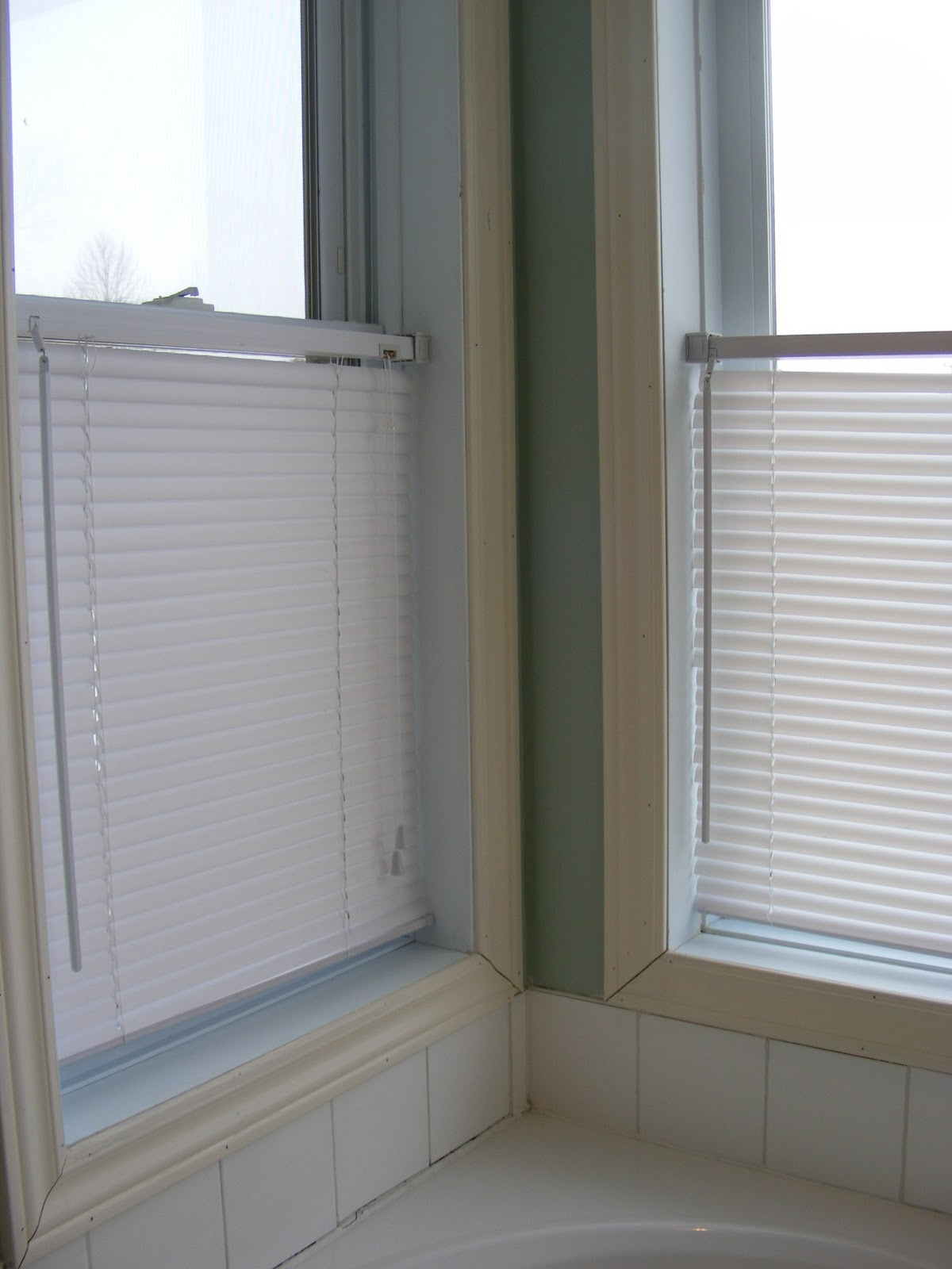 Charming Cleaning Mini Blinds