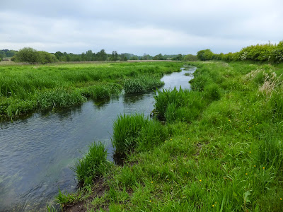 River Nar at Castle Acre Common