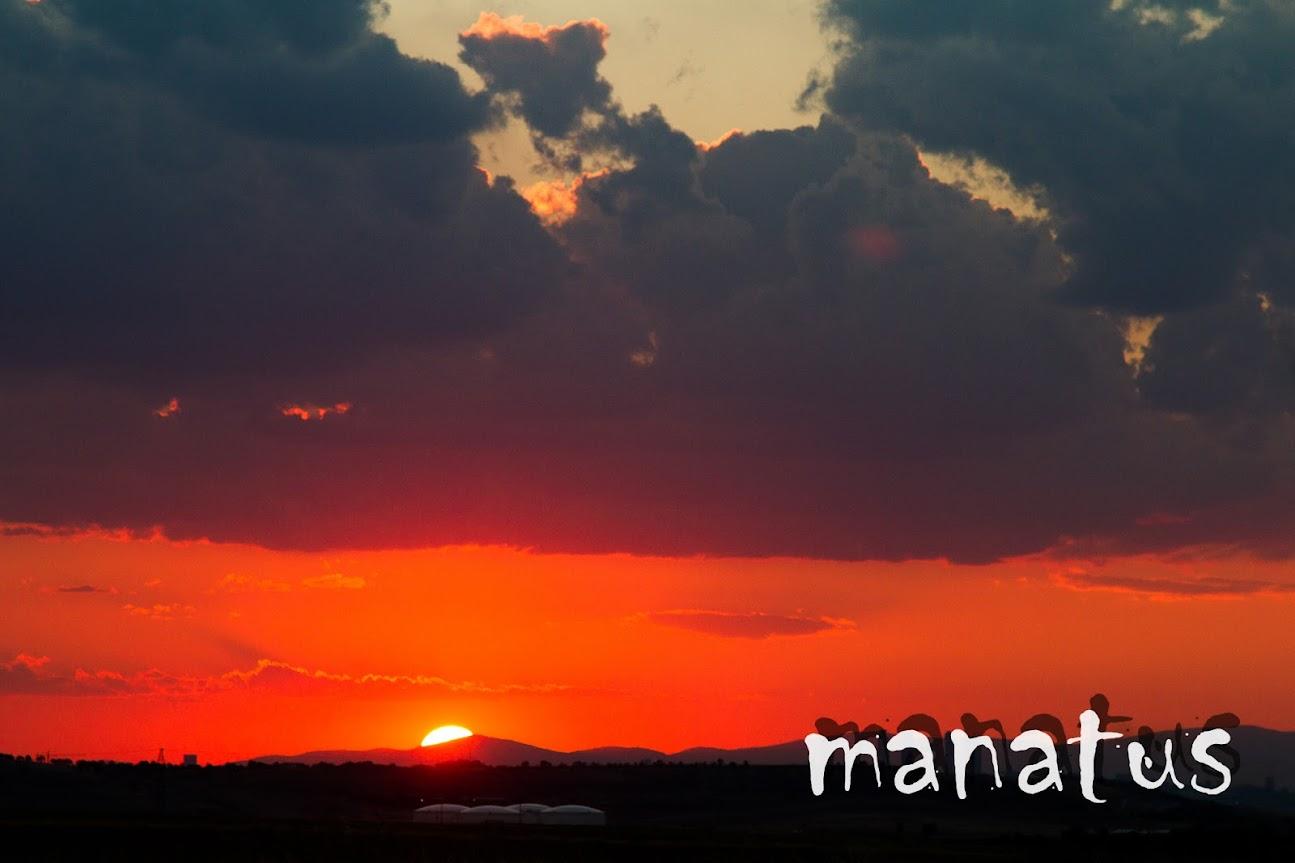 manatus foto blog anochecer