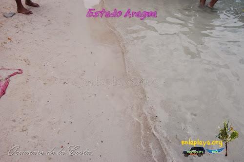 Playa La Cienaga, Sector Ocumare de la Costa, Estado Aragua, Venezuela