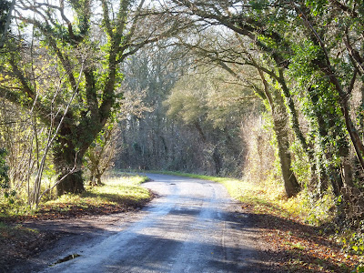 Buckles Wood on the right as the road head round to south east