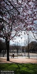 Dans un parc à Clermont