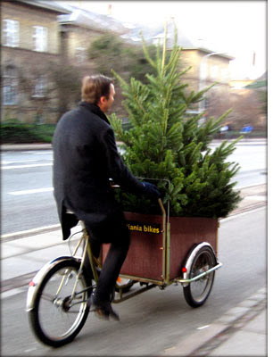 Christmas tree delivery London